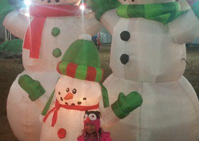 ChristmasTreeVillageGallery (11)