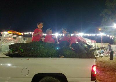 ChristmasTreeVillageGallery (2)