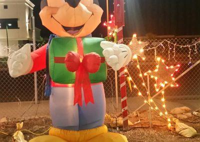 ChristmasTreeVillageGallery (39)