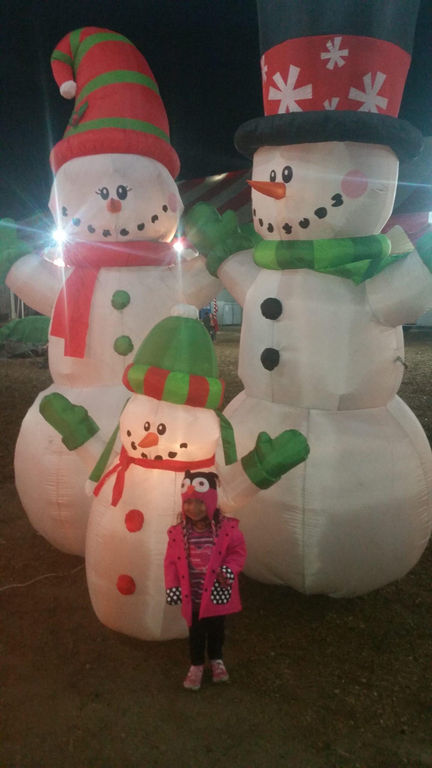 ChristmasTreeVillageGallery (8)